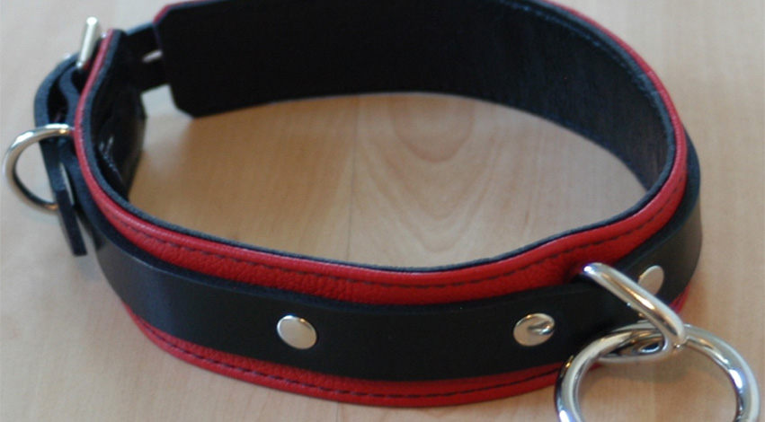 leather - Personalizing Queries: What Ways Can You Choose to Do a Custom Dog Collar?