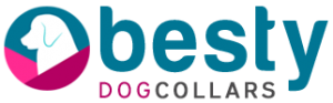 logo 300x93 - logo